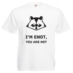 i'am enot, You are not