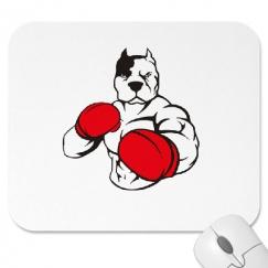 картинка питбуль в боксерских перчатках